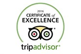 Certificate of Excellence graphic