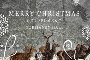 Christmas at Normanby graphic