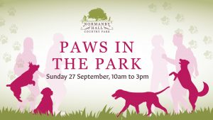 Postponed – Paws in the Park Challenge graphic