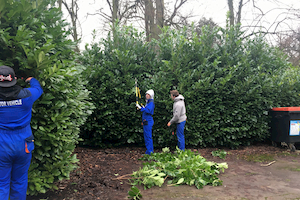 North Lindsey College students tackle triffids at Normanby Hall Country Park