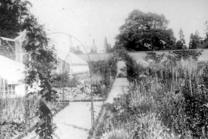 Kitchen Gardens at Normanby Hall