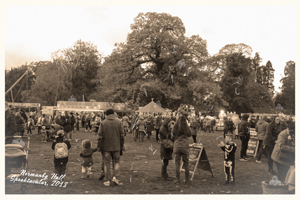 Photograph of crowd at Spooktacular event