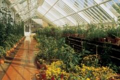 Walled garden greenhouse